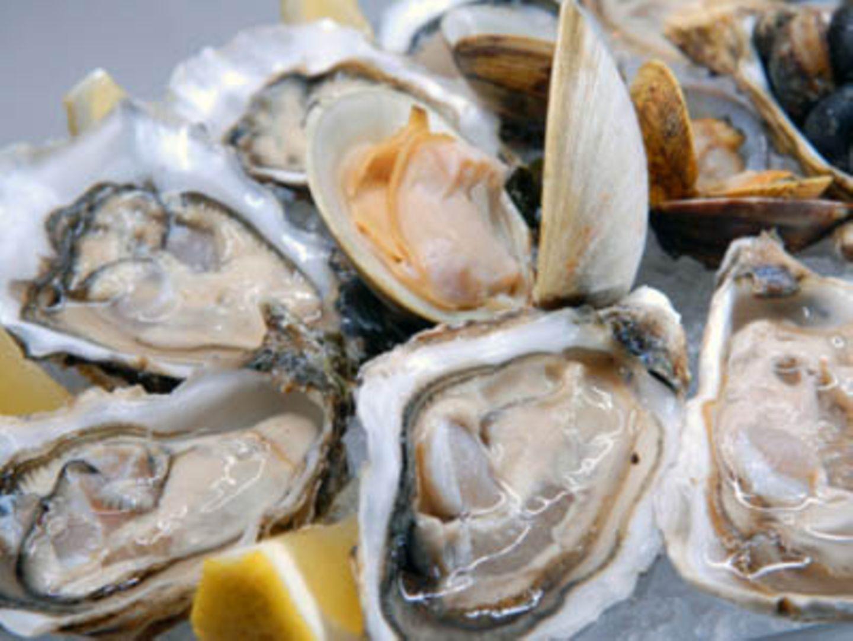Austern regen Testosteronbildung an