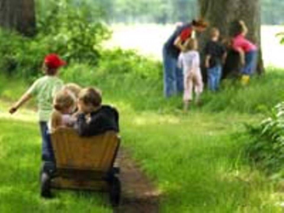 Kindergärten: Kindergarten auf dem Bauernhof
