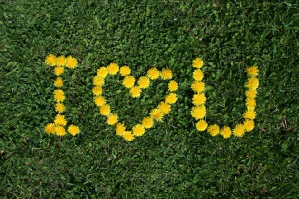 Liebesbotschaften: Mehr Lust auf Liebe