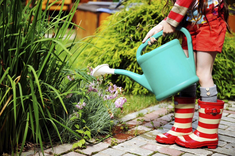 Schönes für den Garten
