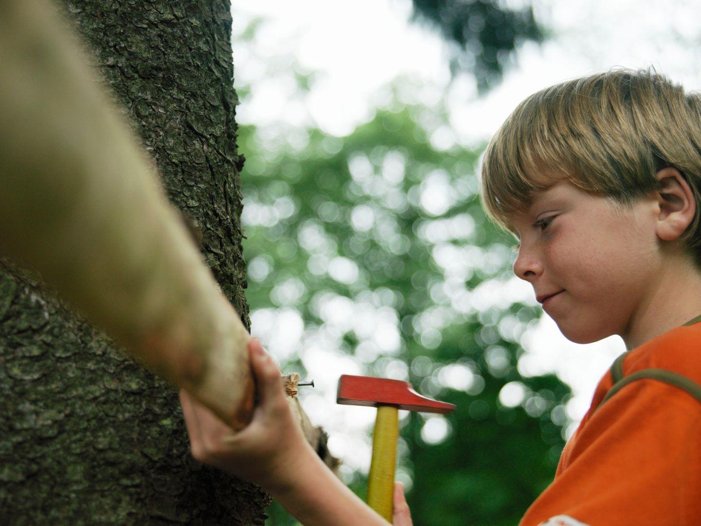 Ein Baumhaus bauen: Tipps für Baumhaus-Bauherren