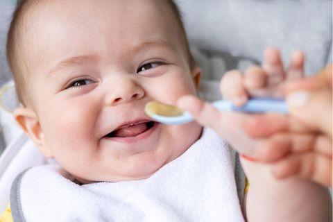 Familien-Küche: Rezepte für Babys