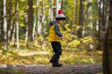 Kleiner Junge balanciert auf einem Baumstamm