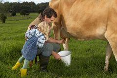 Mann und Kind melken Kuh auf einer Wiese