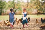 2 Mädchen füttern Hühner