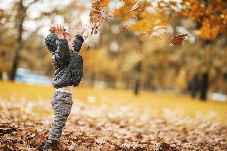 Herbst: Kinder, das wird ein toller Herbst!