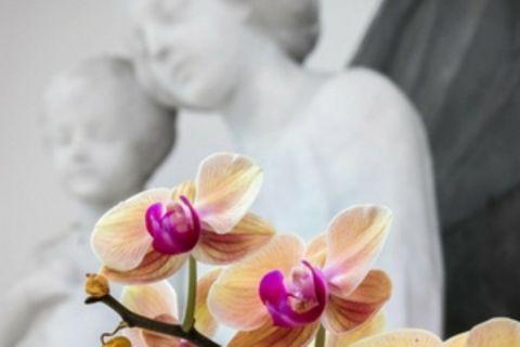 Blog Herzkind-Mama Keine Taufe