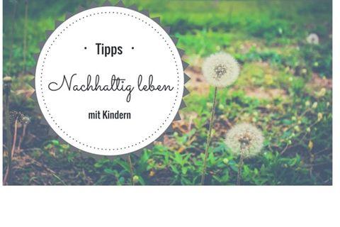Blog Heute ist Musik Ökologisch Leben