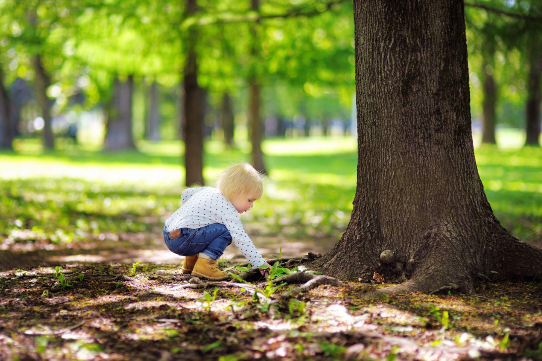 Kleines Mädchen spielt mit Erde im Park