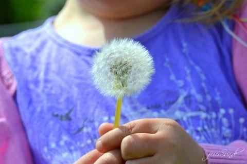 Blog JesSi Ca feierSun.de !0 Wünsche für das Kind