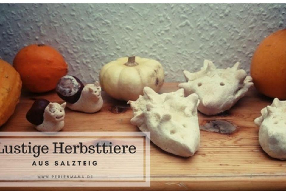 Lustige Herbsttiere aus Salzteig basteln