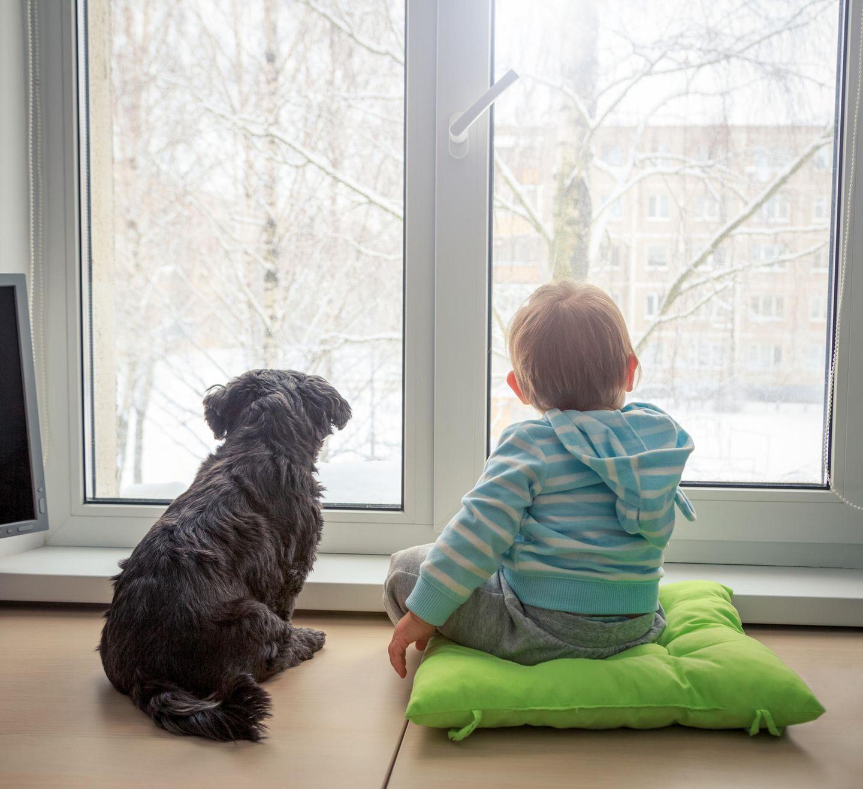 Blog Herzkind-Mama Welpen und Babys