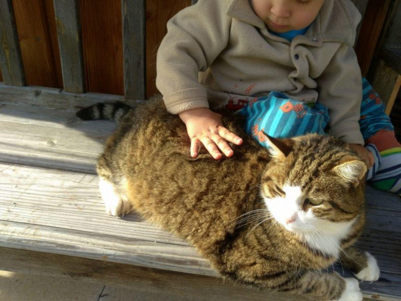 Rubbelbatz: Tiere für Kleinkinder - Warum das eine gute Idee ist