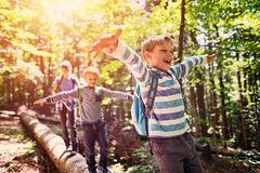 Breite, endlos lange Wege? Laaangweilig! Kinder lieben kurven- und abwechslungsreiche Strecken – am liebsten schön schmal und kurvig. Denn hinter der nächsten Biegung lauert bestimmt etwas Spannendes! Oder kleine Klettermöglichkeiten zwischendurch. Echter Klassiker mit Leuchtende-Augen-Potenzial: Bäche mit kleinen Holzbrücken. Ein Riesenspaß. Für alle!