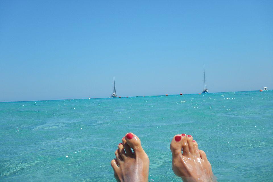 Blog Wellness Mama