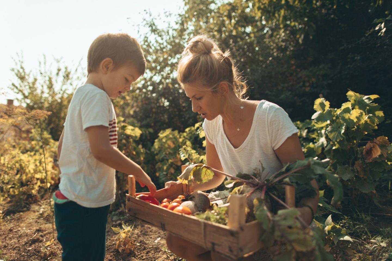 Richtig essen: Zehn Fragen zur Kinderernährung