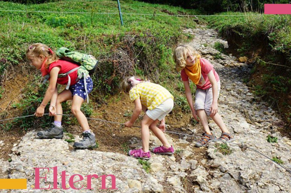 Blog Reges Leben, Geschwister