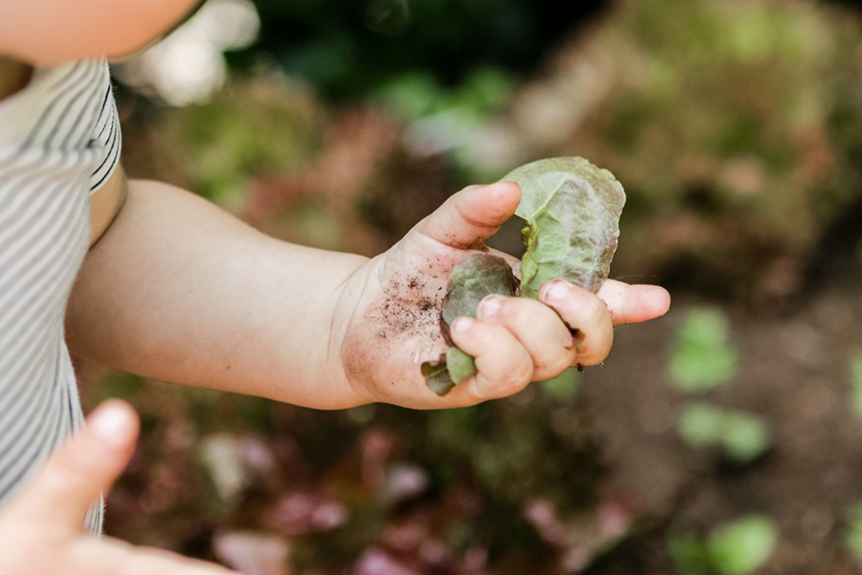 Blog Titantinas Ideen, Nachhaltigkeit