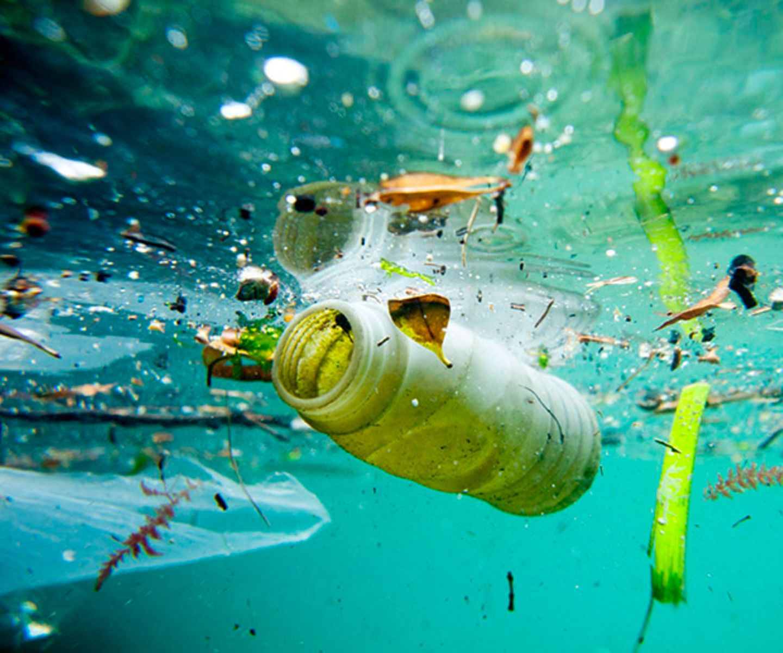 Flasche Plastikmüll Meer