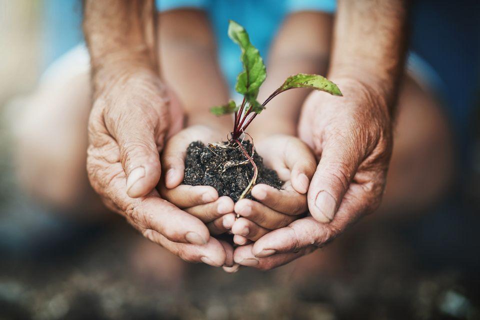Blogs zur Nachhaltigkeit