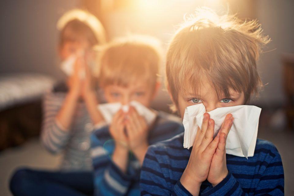 Drei Kinder putzen sich die Nase