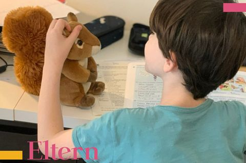 BloggerMumof3Boys, Homeschooling