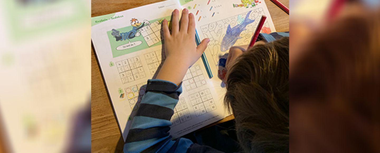 Junge im Homeschooling