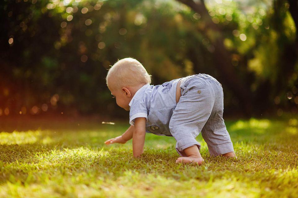 Baby krabbelt auf einer Wiese
