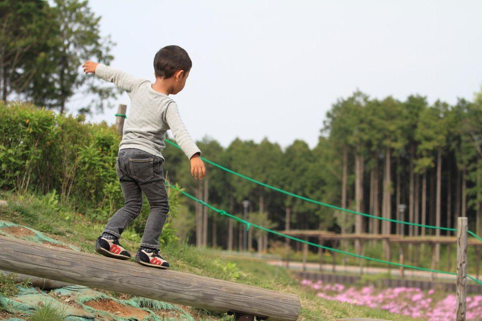 Kleiner Junge balanciert im Wald auf einem Baumstamm