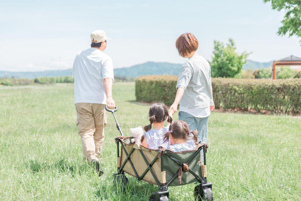 Zwei Kleinkinder sitzen fröhlich in einem Holz-Bollerwagen bei Sonnenschein in der Natur.
