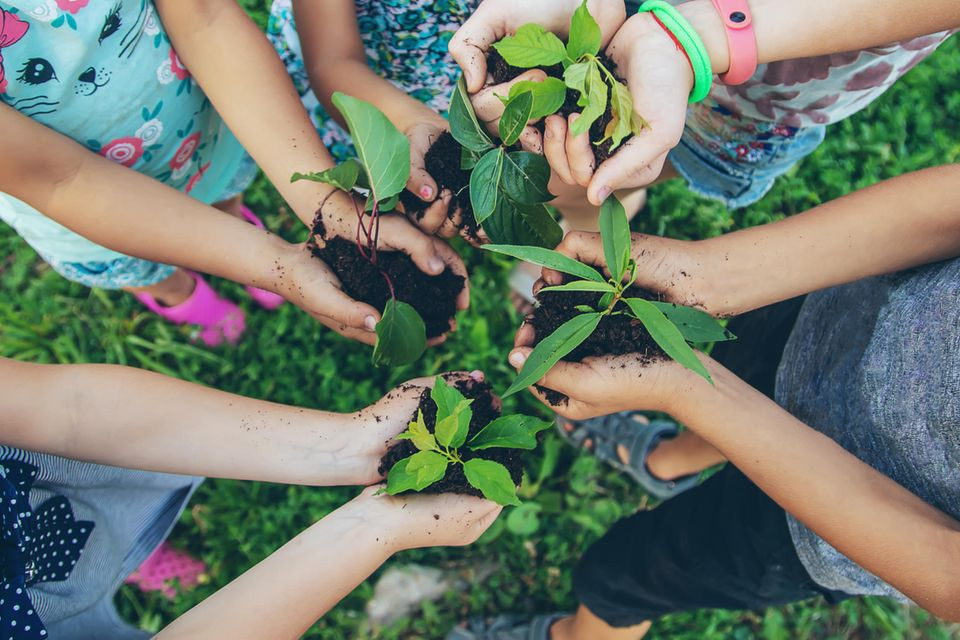 Kinderhände halten Erde mit Pflanzen