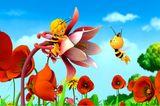 Biene Maja: auf einer Blüte