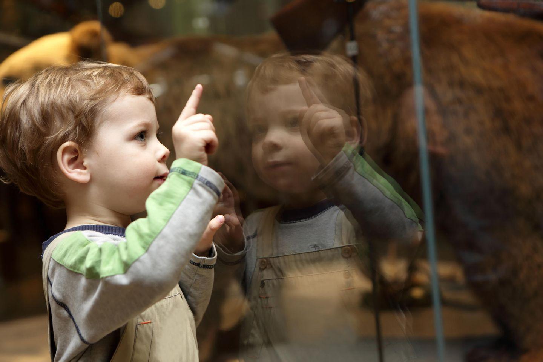 Kinderfreizeitbonus: Kind im Museum