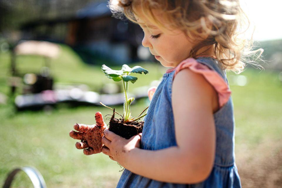 Nachhaltiges Leben mit Kind